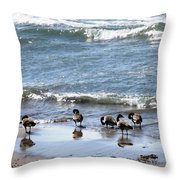 Canada Geese In Lake Erie Throw Pillow