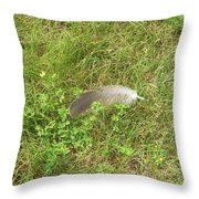 Canada Goose Feather Throw Pillow