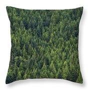 Canadian Boreal Forest. Throw Pillow