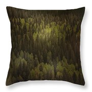 Canadian Forest - The Woods Are Lovely Dark And Deep Throw Pillow by Christine Till