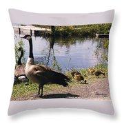 Canadian Geese At Trojan Lake Ny Throw Pillow