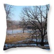 Canadian Geese Take Flight Throw Pillow