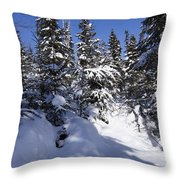 Canadian Winter Scene Throw Pillow