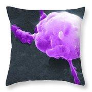 Cancer Cell Death Sequence, Sem Throw Pillow