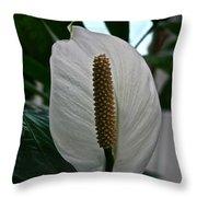 Candle White Throw Pillow