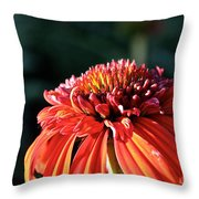 Candy Corn Cone Flower Throw Pillow