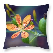 Candy Lily Throw Pillow