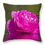 Candy Pink Rose  Throw Pillow