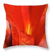 Canna Closeup Throw Pillow by Susan Herber