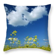 Canola Flowers, Marquette, Manitoba Throw Pillow