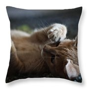Can't Stop Spinning Throw Pillow