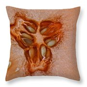 Cantaloupe Core Throw Pillow by Susan Herber