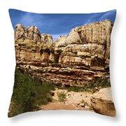 Canyon Castle Throw Pillow