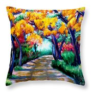 Canyon De Chelly In The Fall Throw Pillow