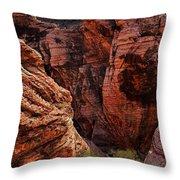 Canyon Glow Throw Pillow by Rick Berk