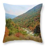 Canyon Stream Throw Pillow by Heidi Smith