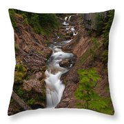 Canyon Stream Throw Pillow by Mike Reid