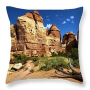 Canyonlands Chesler Park Throw Pillow