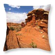 Canyonlands Textures Throw Pillow