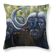 Cape Buffalo 2 Throw Pillow