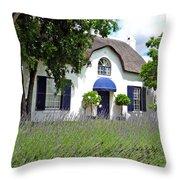 Cape Dutch Cottage Throw Pillow