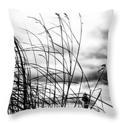 Cape Of Darkness Throw Pillow