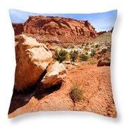 Capitol Boulder Throw Pillow