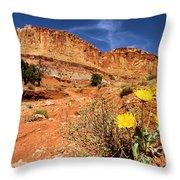 Capitol Flower Garden Throw Pillow