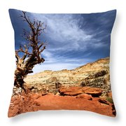 Capitol Hike Throw Pillow