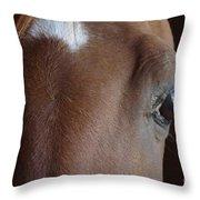 Caravaggio 02 Throw Pillow