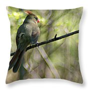 Cardinal 5 Throw Pillow