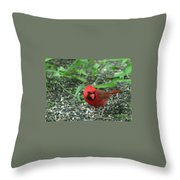 Cardinal In Springtime Throw Pillow