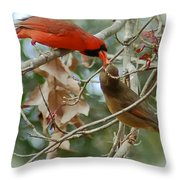 Cardinal Kisses Throw Pillow
