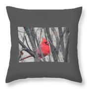 Cardinal With Fluffed Feathers Throw Pillow