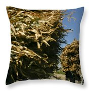 Cargo Transport Throw Pillow