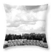 Cariboo Country Hay Bales Throw Pillow