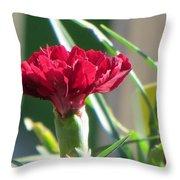 Carnation Named Hounsa Throw Pillow