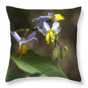Carolina Horse Nettle - Bull Nettle - Devil's Tomato - Solanum Carolinense Throw Pillow