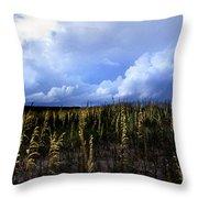 Carolina Sea Oats Throw Pillow