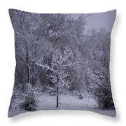 Carolina Snowfall Throw Pillow