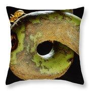 Carpenter Ant Camponotus Schmtzi Throw Pillow