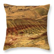 Carroll Rim Painted Hills Throw Pillow