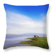 Carrowmore Lake, Co Mayo, Ireland Throw Pillow