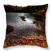 Cary Lake After The Storm Throw Pillow