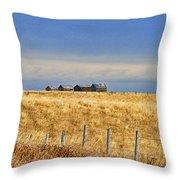 Casc8479-11 Throw Pillow