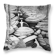 Cascade In Boulders Throw Pillow