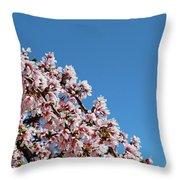 Cascade In Pink Throw Pillow