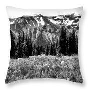 Cascade Mountain Range Throw Pillow