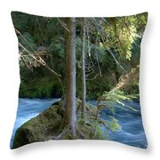 Cascade Rapids Throw Pillow