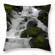 Cascades Below Throw Pillow